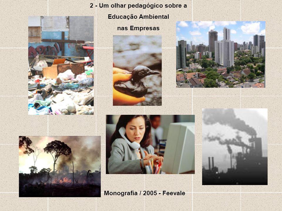 2 - Um olhar pedagógico sobre a Educação Ambiental nas Empresas Monografia / 2005 - Feevale
