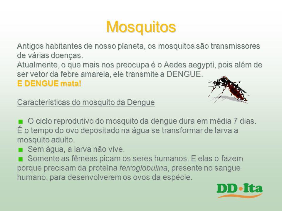 Mosquitos Antigos habitantes de nosso planeta, os mosquitos são transmissores de várias doenças. Atualmente, o que mais nos preocupa é o Aedes aegypti