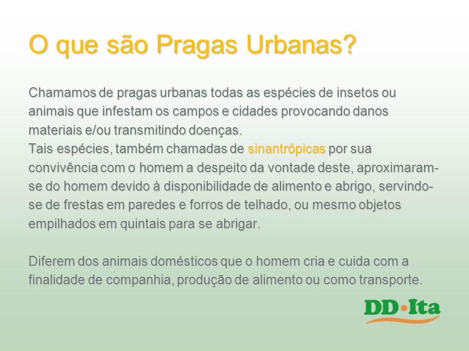 O que são Pragas Urbanas? Chamamos de pragas urbanas todas as espécies de insetos ou animais que infestam os campos e cidades provocando danos materia