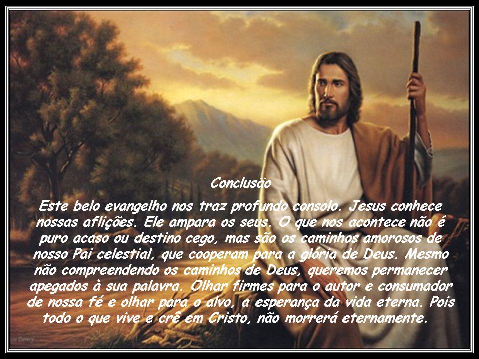 Jesus Cristo, ao declarar-se o pão da vida, quer expressar que a real e verdadeira satisfação, realização e felicidade do homem estão somente nele. O