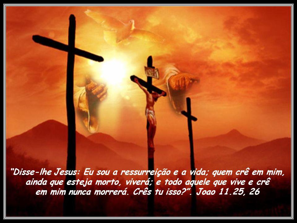Disse-lhe Jesus: Eu sou a ressurreição e a vida; quem crê em mim, ainda que esteja morto, viverá; e todo aquele que vive e crê em mim nunca morrerá.