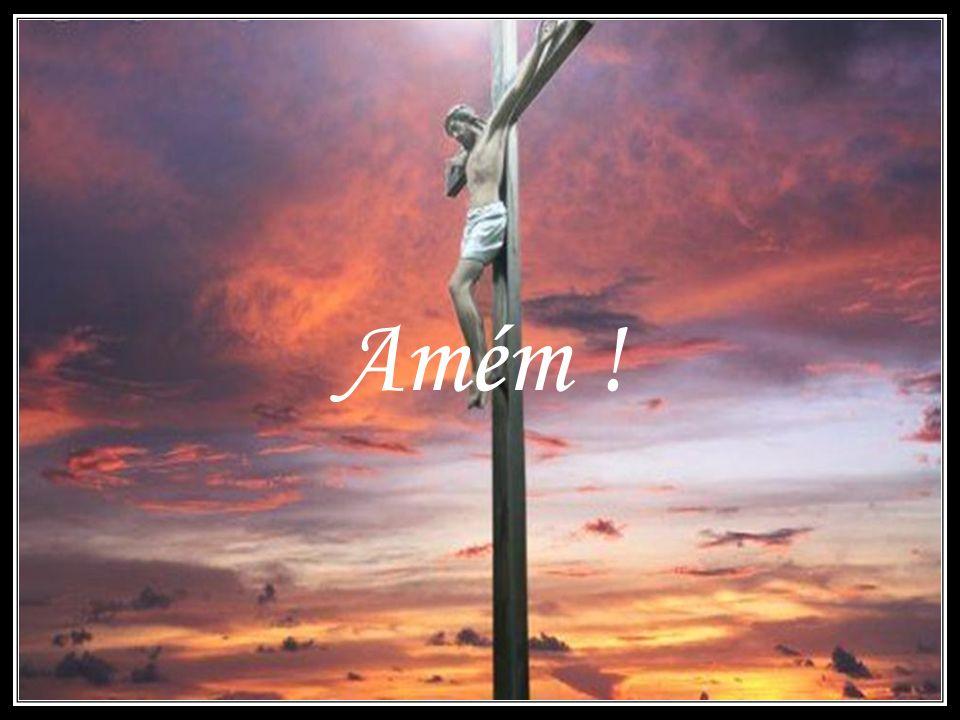Conclusão Este belo evangelho nos traz profundo consolo. Jesus conhece nossas aflições. Ele ampara os seus. O que nos acontece não é puro acaso ou des