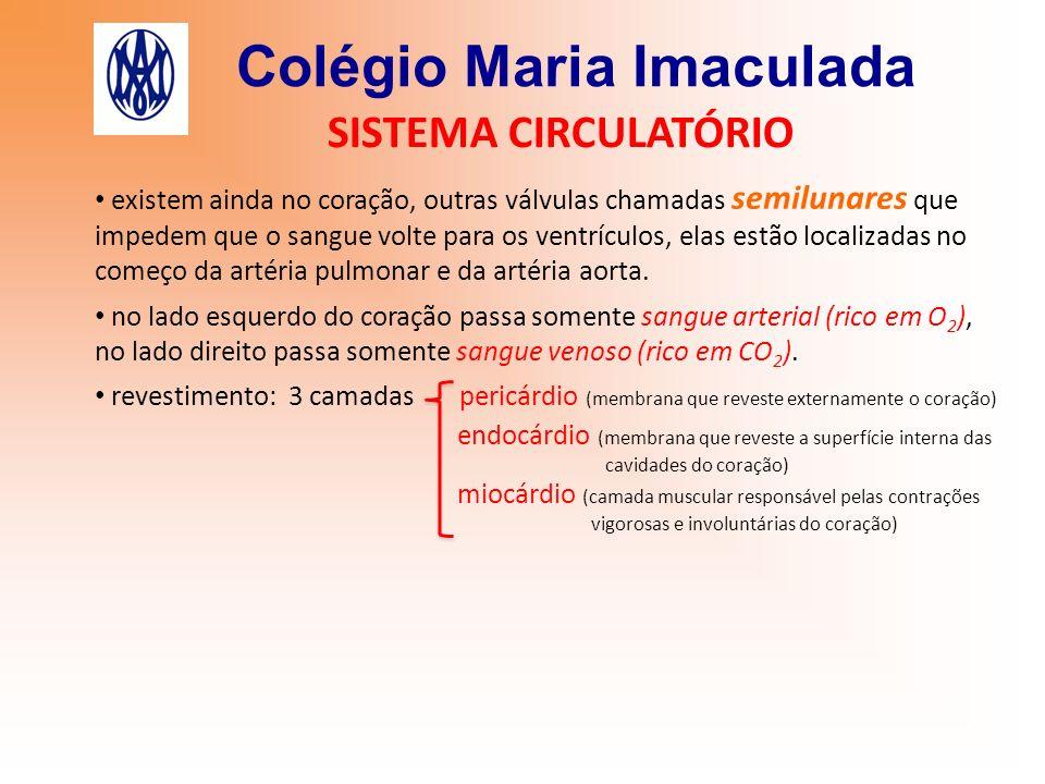 Colégio Maria Imaculada SISTEMA CIRCULATÓRIO existem ainda no coração, outras válvulas chamadas semilunares que impedem que o sangue volte para os ven