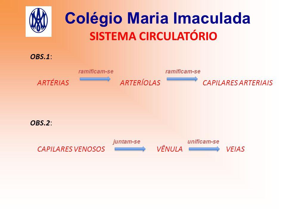 Colégio Maria Imaculada SISTEMA CIRCULATÓRIO OBS.1: ARTÉRIAS ARTERÍOLAS CAPILARES ARTERIAIS ramificam-se OBS.2: CAPILARES VENOSOS VÊNULA VEIAS juntam-