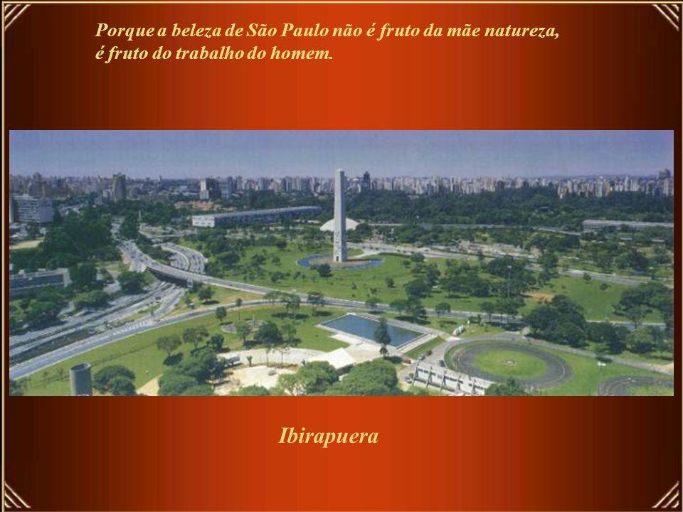 São Paulo se poluiu visualmente com a CowParade, mas se despoluiu com o Projeto Cidade Limpa. Agora tem de começar urgentemente a despoluir o Tietê pa