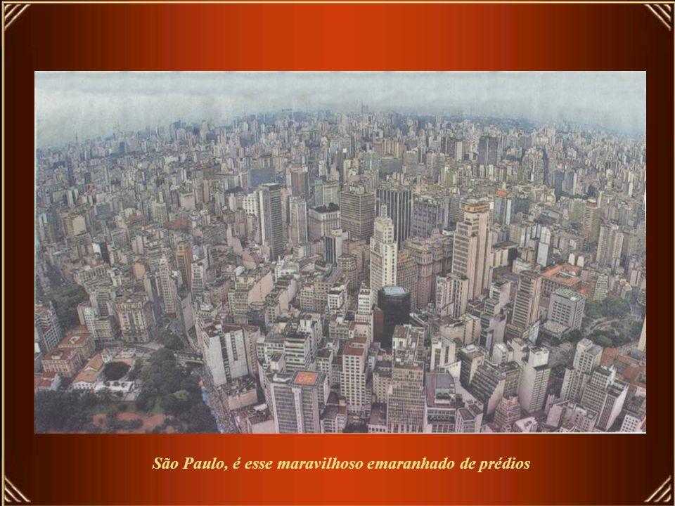 Mas, mesmo se levarmos o julgamento para o quesito das belezas naturais, São Paulo se dá mundialmente muito bem por uma razão tecnicamente comprovada.