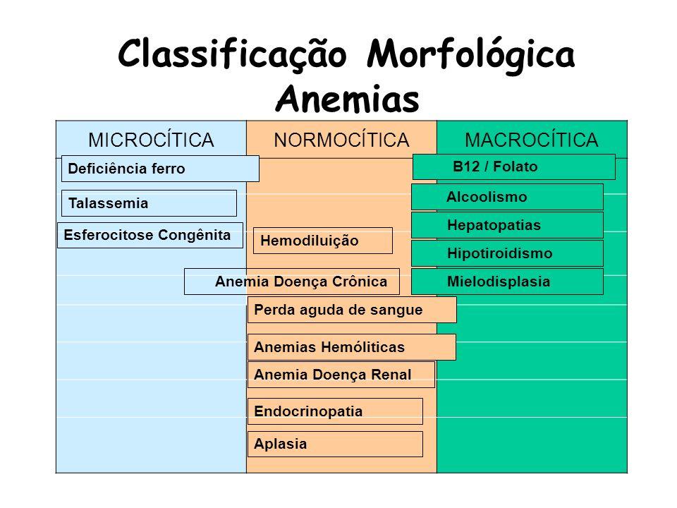 Classificação Etiopatogênica Anemias Relativa: pseudo-anemias Gravidez: hemodiluição; Hemodiluição: infusão (hidratação); Absoluta ou Verdadeiras Hiperproliferativas: aumento da destruição de eritrócitos Anemias hemolíticas Hipoproliferativas: menor produção de eritrócitos Pertubação da proliferação e diferenciação das células tronco e das células precursoras eritróides; Pertubação da maturação e/ ou do meio ambiente; Deficiências nutricionais: Fe, vit.