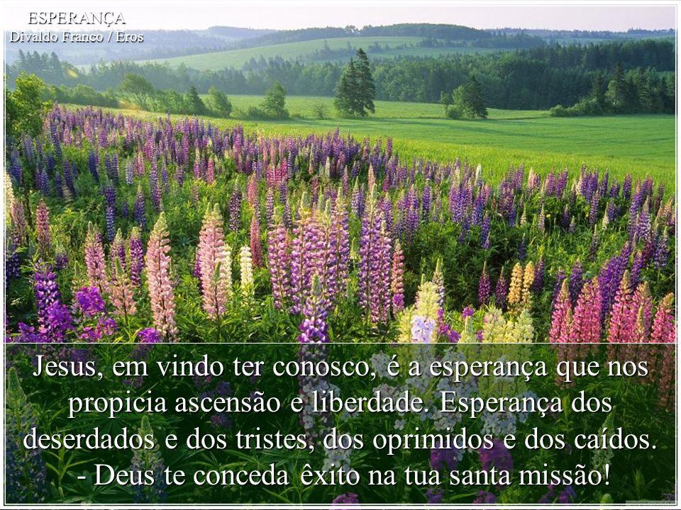Esperança ! Por onde transites, onde te agasalhes, pelo que consegues, mensageira celeste, sê o hálito de Deus mantendo a vida em harmonia! ESPERANÇA