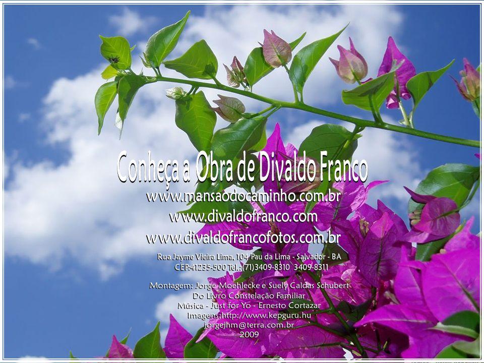 Divaldo Franco / Joanna de Ângelis Por essas e muitas outras razões, a constelação familiar jamais desaparecerá da sociedade terrestre, dando lugar ao