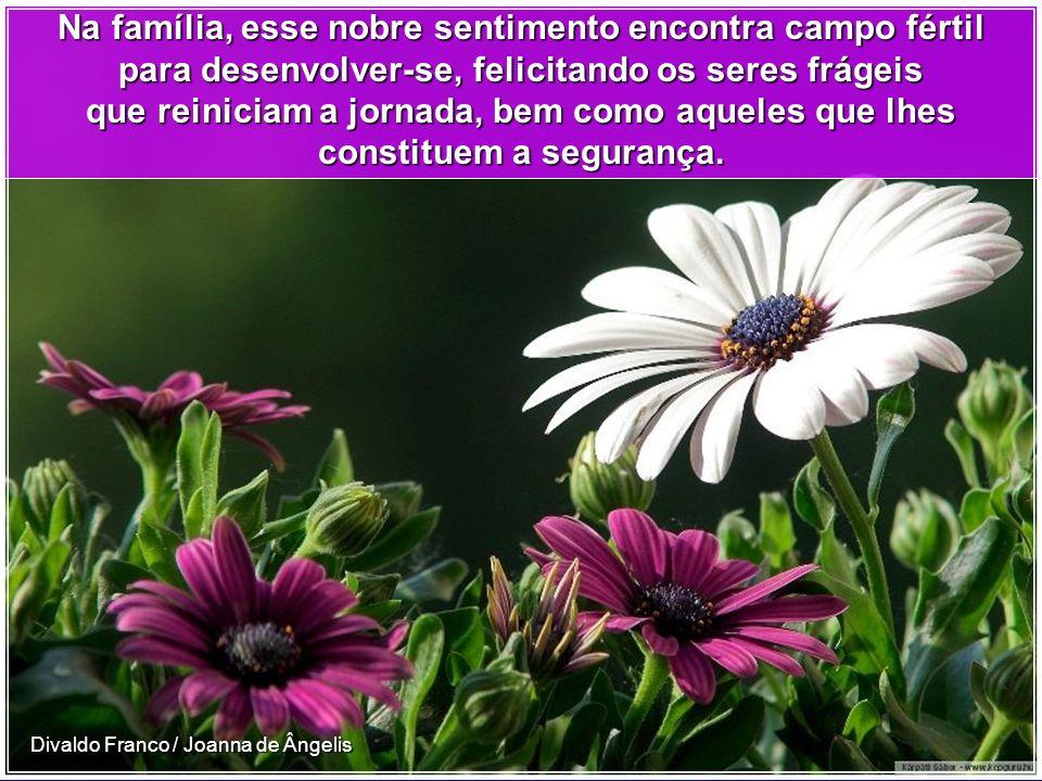 Divaldo Franco / Joanna de Ângelis Há, em todas as formas de vida, essa energia divina que, no ser humano, apresenta-se em forma de consciência, de di