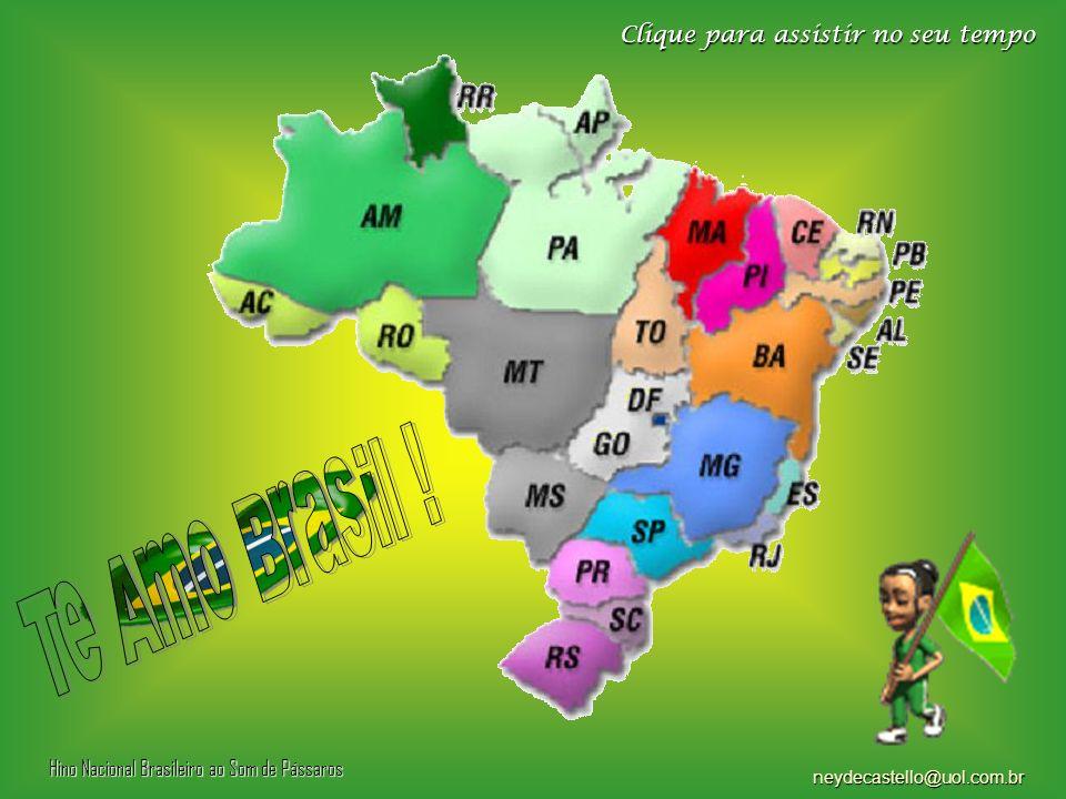 E - Mesmo sendo um país em desenvolvimento, os internautas brasileiros representam uma fatia de 40% do mercado na América Latina.
