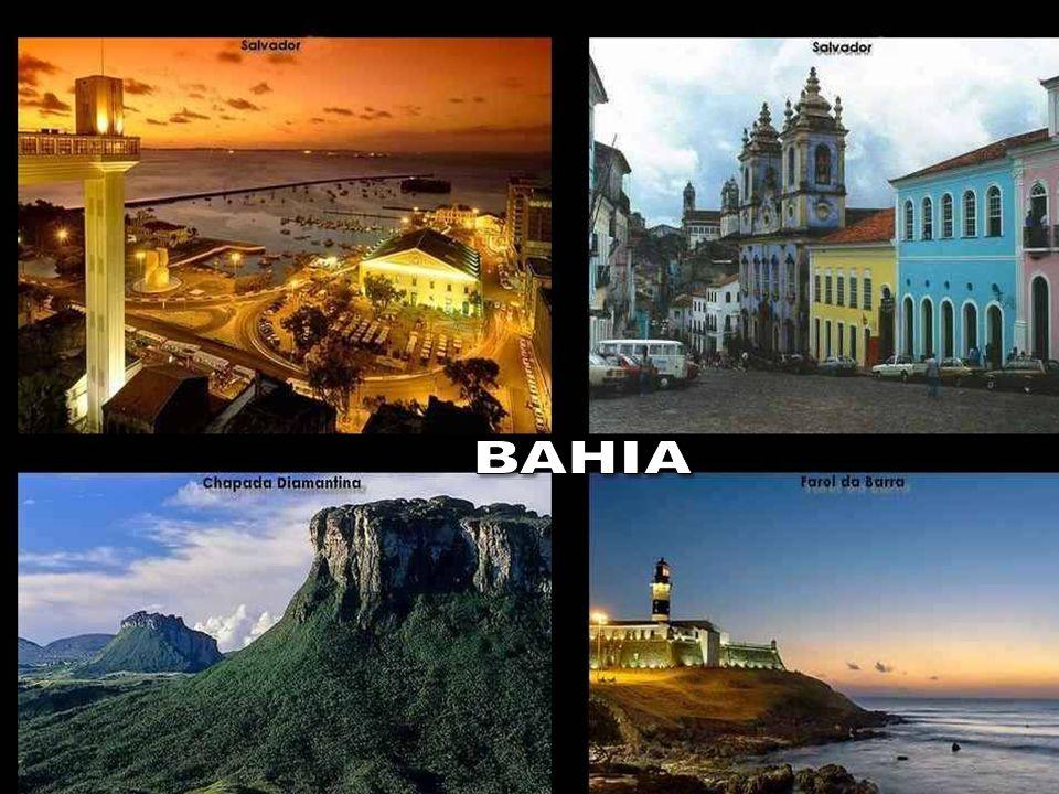 Vamos lembrar também que o Brasil é o país mais empreendedor do mundo e que mais de 70% dos brasileiros, pobres e ricos, dedicam considerável parte de seu tempo em trabalhos voluntários .