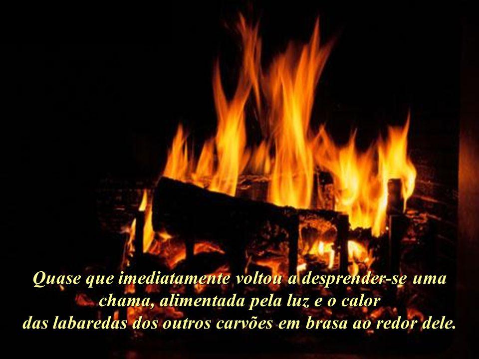 Antes de prepararse para ir embora, movimentou novamente o pedaço de carvão já apagado, frío e inutil, colocando-o novamente no meio do fogo..