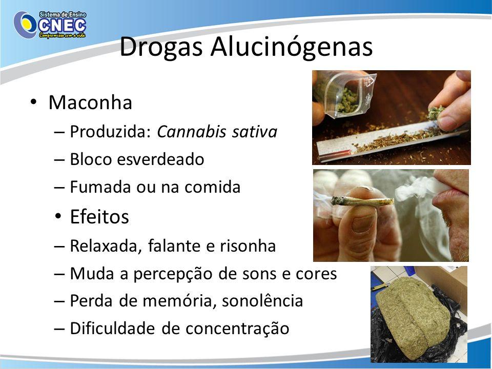 Drogas Alucinógenas Maconha – Produzida: Cannabis sativa – Bloco esverdeado – Fumada ou na comida Efeitos – Relaxada, falante e risonha – Muda a perce