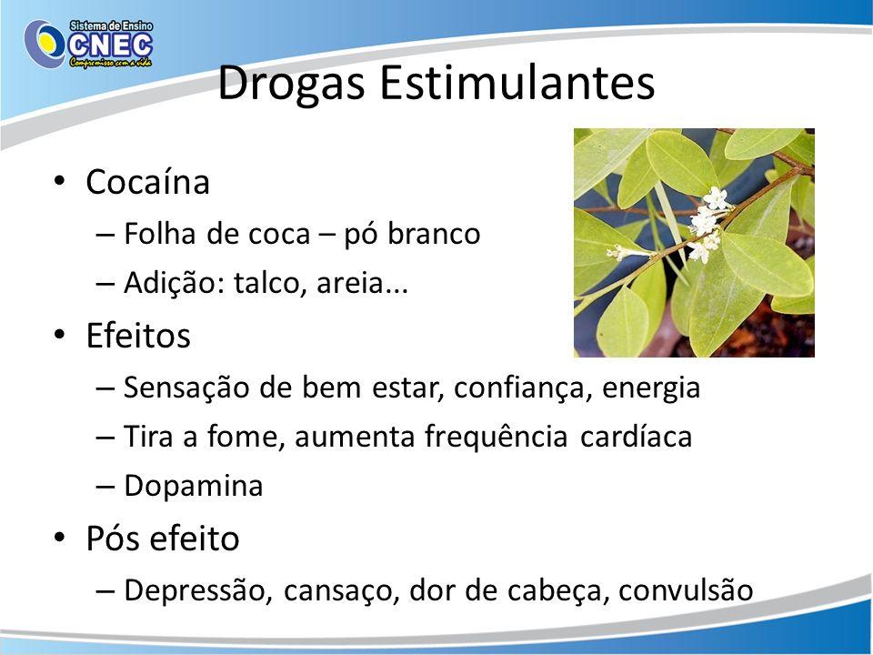 Drogas Estimulantes Cocaína – Folha de coca – pó branco – Adição: talco, areia... Efeitos – Sensação de bem estar, confiança, energia – Tira a fome, a