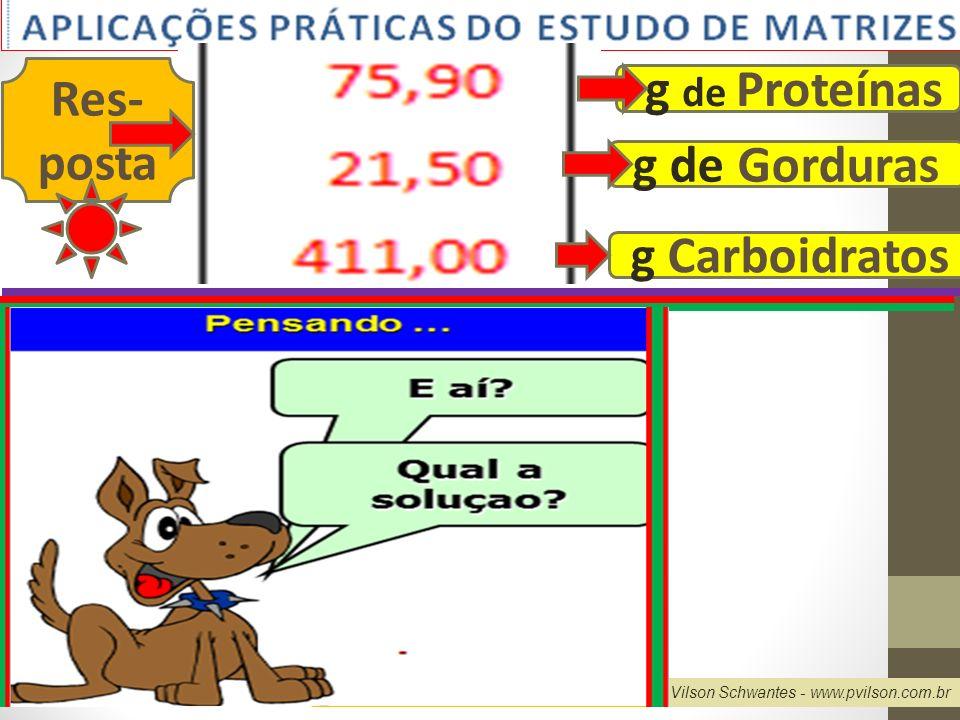 Professor Vilson Schwantes - www.pvilson.com.br g de Proteínas g Carboidratos g de Gorduras Res- posta