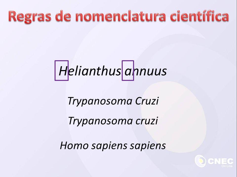Helianthus annuus Trypanosoma Cruzi Trypanosoma cruzi Homo sapiens sapiens