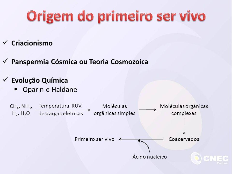 Criacionismo Panspermia Cósmica ou Teoria Cosmozoica Evolução Química Oparin e Haldane CH 4, NH 3, H 2, H 2 O Moléculas orgânicas simples Moléculas or