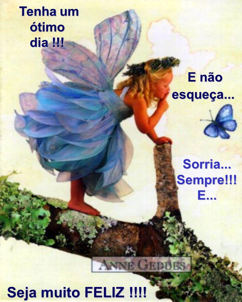 Tenha um ótimo dia !!! Sorria... Sempre!!! E... E não esqueça... Seja muito FELIZ !!!! Seja muito FELIZ !!!!