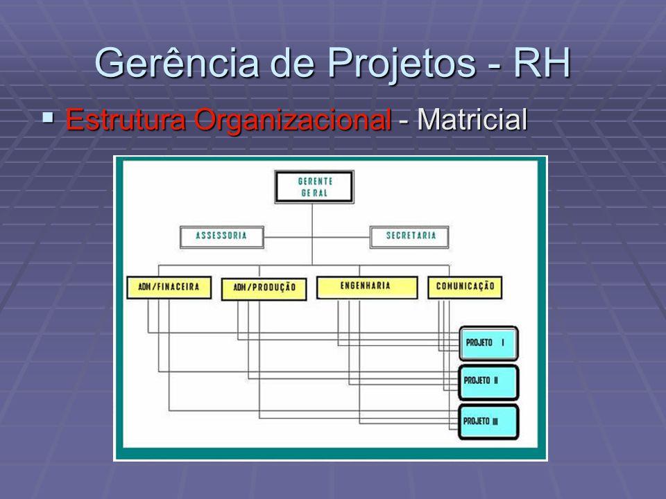 Gerência de Projetos - RH Estrutura Organizacional - Matricial Estrutura Organizacional - Matricial