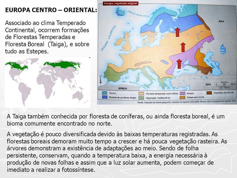 EUROPA CENTRO – ORIENTAL: Associado ao clima Temperado Continental, ocorrem formações de Florestas Temperadas e Floresta Boreal (Taiga), e sobre tudo