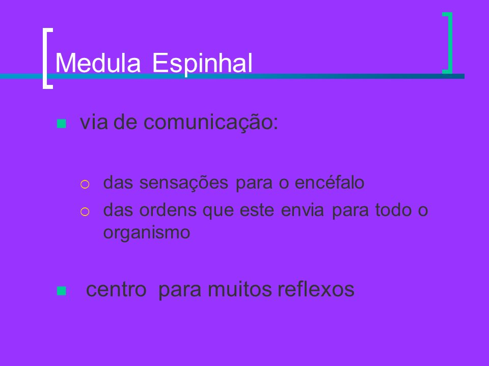 Medula Espinhal via de comunicação: das sensações para o encéfalo das ordens que este envia para todo o organismo centro para muitos reflexos