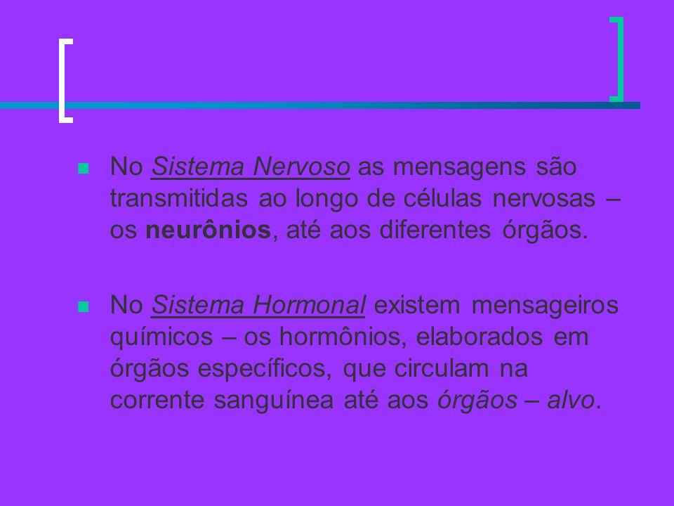No Sistema Nervoso as mensagens são transmitidas ao longo de células nervosas – os neurônios, até aos diferentes órgãos. No Sistema Hormonal existem m