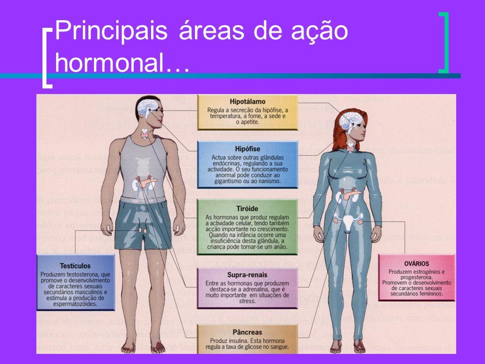 Principais áreas de ação hormonal…