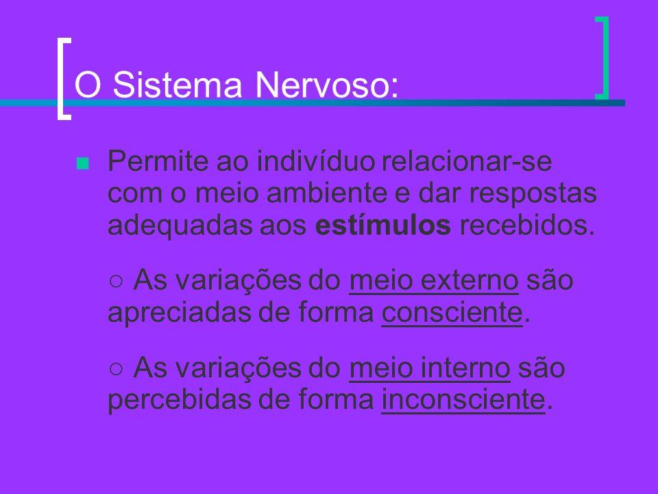 O Sistema Nervoso: Permite ao indivíduo relacionar-se com o meio ambiente e dar respostas adequadas aos estímulos recebidos. As variações do meio exte