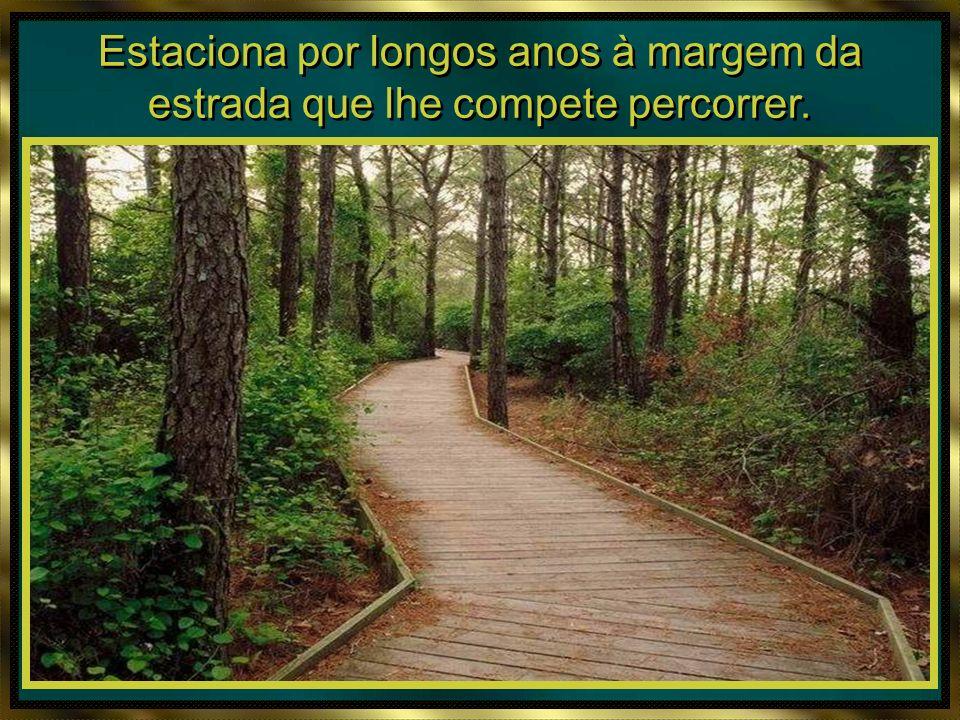 O homem perde muito tempo sobre a Terra. O homem perde muito tempo sobre a Terra.