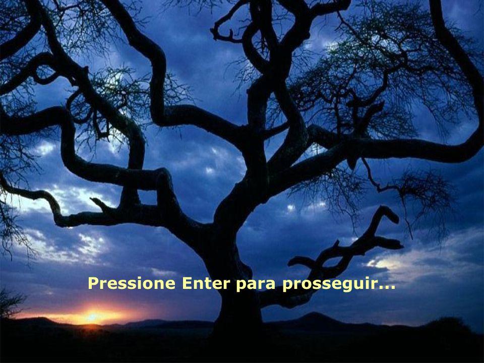 Pressione Enter para prosseguir...