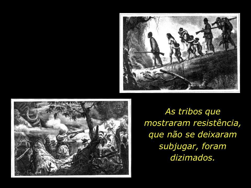 holdemqueen@hotmail.com Os colonizadores, à época do descobrimento, nem sequer admitiram a condição de seres humanos aos povos indígenas, considerando