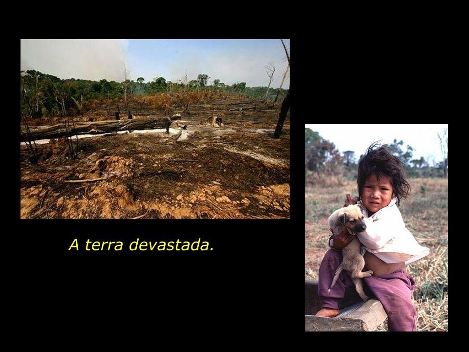 holdemqueen@hotmail.com A fumaça que cega.
