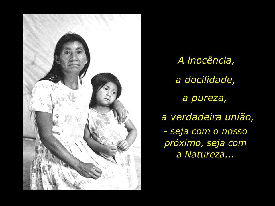 holdemqueen@hotmail.com Ao ignorarmos e destruirmos o que resta da cultura indígena, talvez estejamos ignorando e destruindo a parte mais bela do mosa