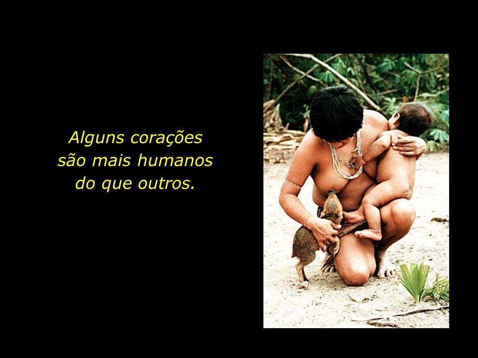 holdemqueen@hotmail.com Conforme acreditam, esta é uma forma de se retribuir à Natureza por tudo o que ela nos oferece. Uma forma de se reverenciar a