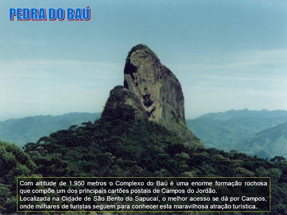 O próprio nome já diz tudo, através deste trenzinho as pessoas fazem um passeio do Centrinho do Capivari até o Pico do Itapeva, passando pela Ducha de Prata.