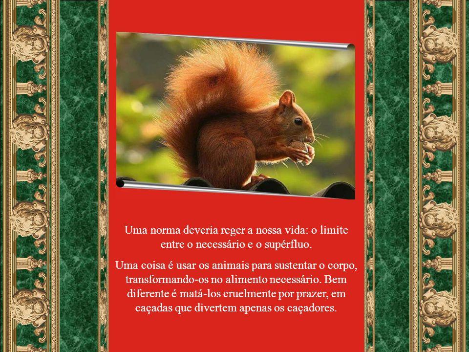 Texto do site: www.momento.com.br Formatação: eduardogusmaodecastro@gmail.com Música: Francis Goya Rio Verde-Go., 22.10.07