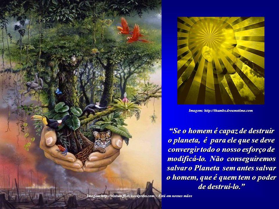 O homem perdeu a dimensão de que o planeta é um organismo vivo, pois somente um organismo vivo e, em consequência, inteli- gente poderia produzir a vi