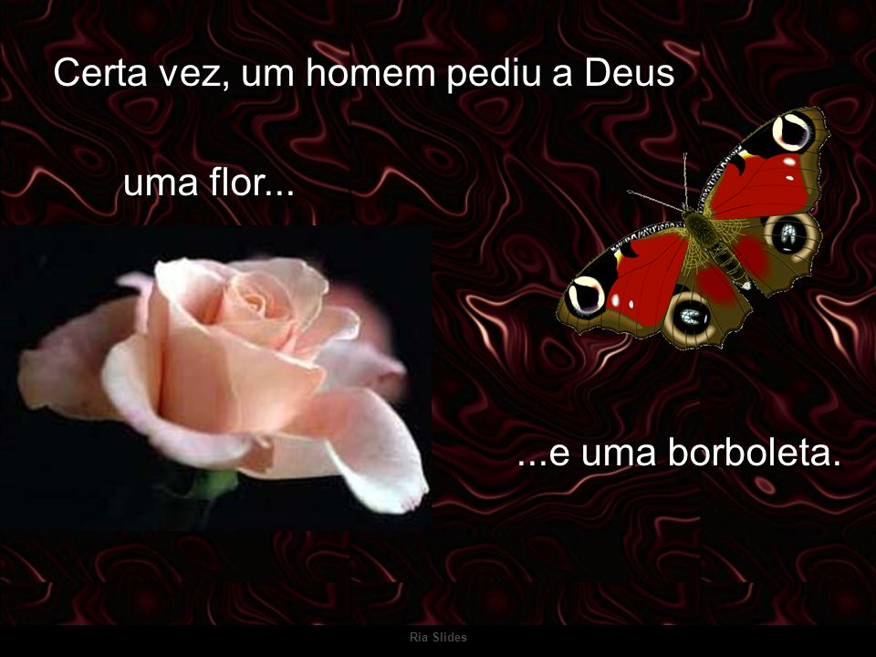 Certa vez, um homem pediu a Deus uma flor......e uma borboleta..