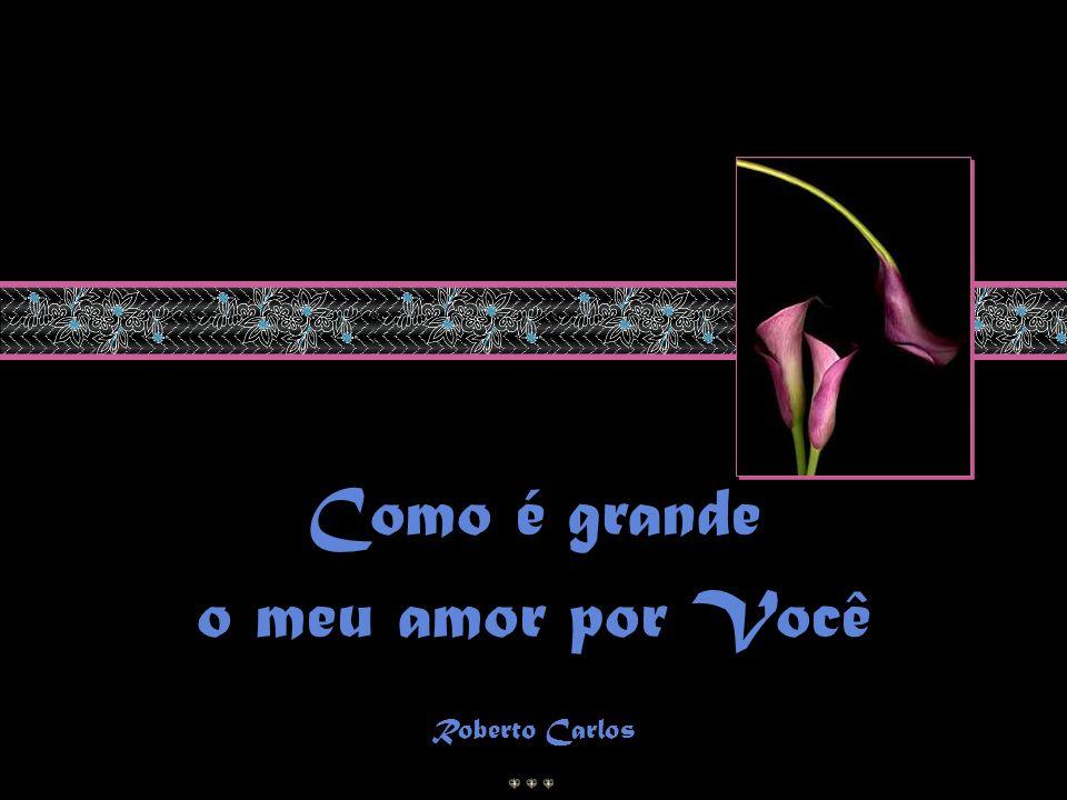 Como é grande o meu amor por Você Roberto Carlos