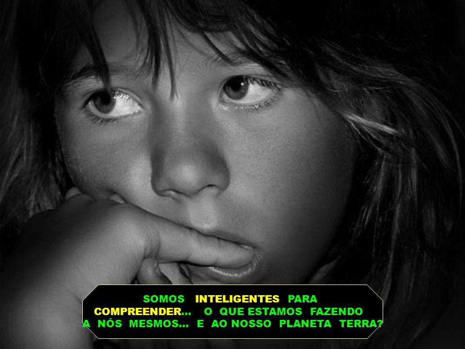 SABEMOS QUE INTELIGÊNCIA E SABEDORIA SÃO TOTALMENTE DISTINTAS... EMBORA COMPLEMENTARES!