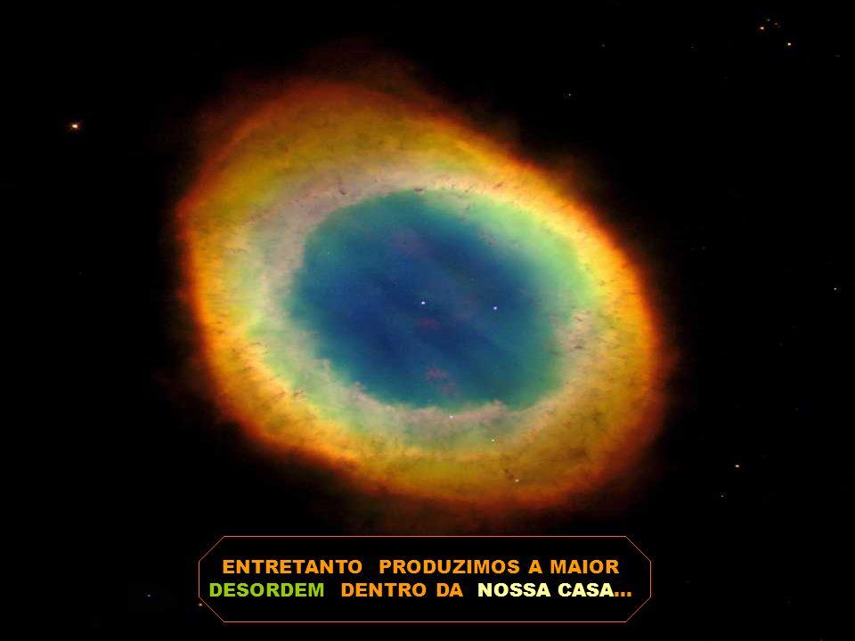 CO-CRIAÇÃO- rose.acaciana@gmail.com jsinicio@gmail.com