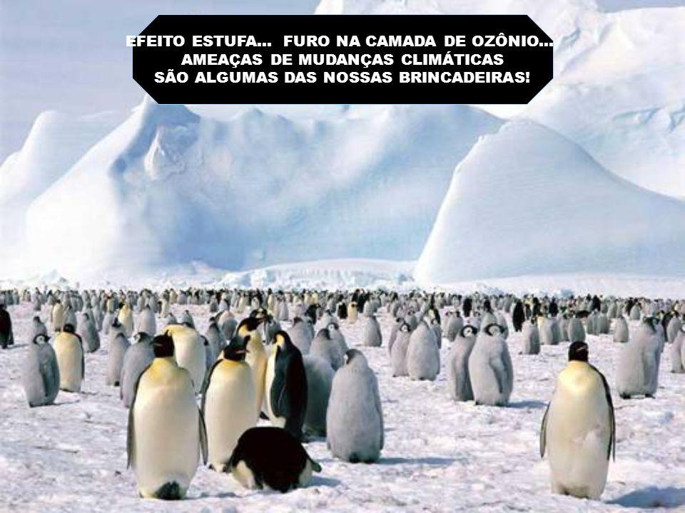 EFEITO ESTUFA...FURO NA CAMADA DE OZÔNIO...