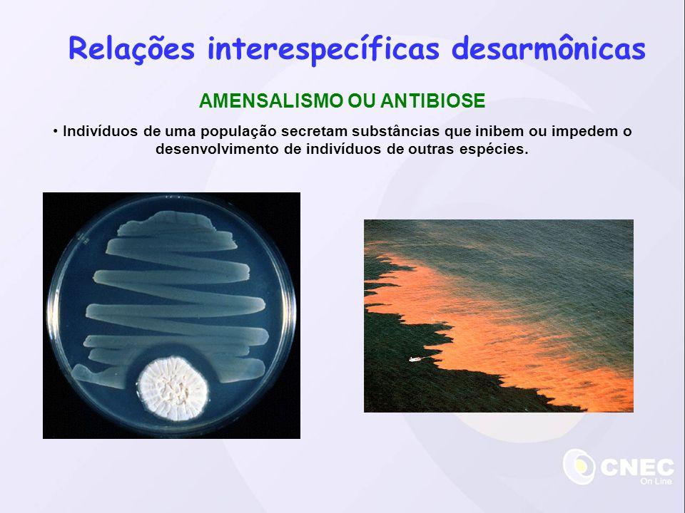 Relações interespecíficas desarmônicas AMENSALISMO OU ANTIBIOSE Indivíduos de uma população secretam substâncias que inibem ou impedem o desenvolvimento de indivíduos de outras espécies.