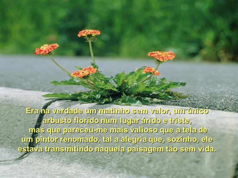 FELIZ DE MIM (E DE VOCÊ) Fátima Irene Pinto Estacionei o carro, tranquei-o e saí correndo.
