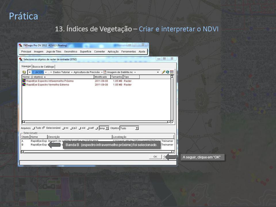 Prática 13. Índices de Vegetação – Criar e interpretar o NDVI Banda B (espectro infravermelho próximo) foi selecionado. A seguir, clique em OK