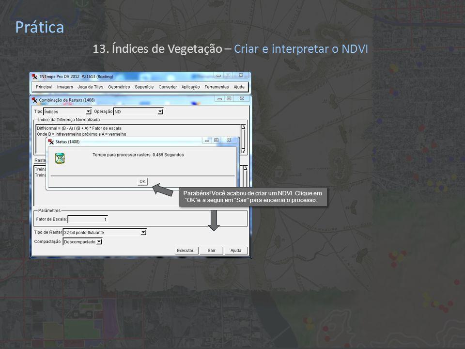 Prática 13. Índices de Vegetação – Criar e interpretar o NDVI Parabéns! Você acabou de criar um NDVI. Clique em OKe a seguir em Sair para encerrar o p