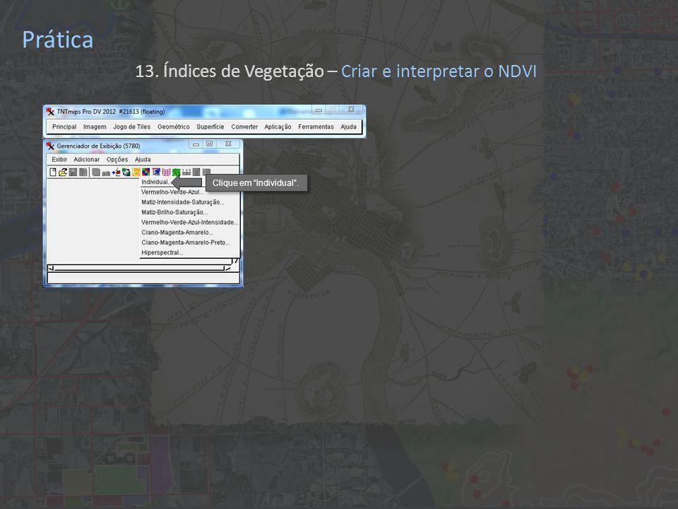 Prática 13. Índices de Vegetação – Criar e interpretar o NDVI Clique em Individual.