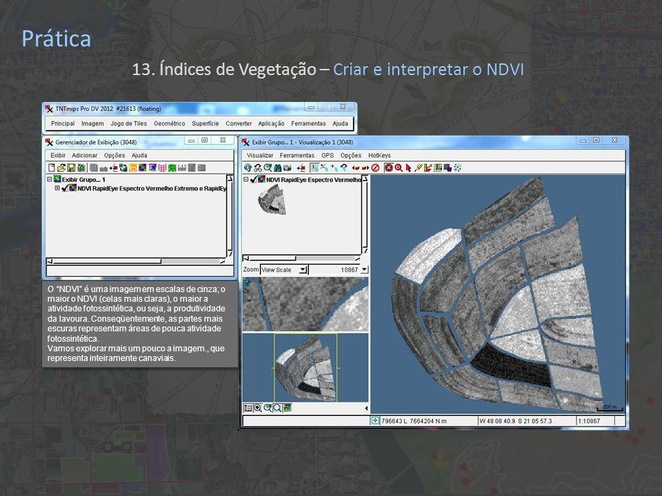 Prática 13. Índices de Vegetação – Criar e interpretar o NDVI O NDVI é uma imagem em escalas de cinza; o maior o NDVI (celas mais claras), o maior a a