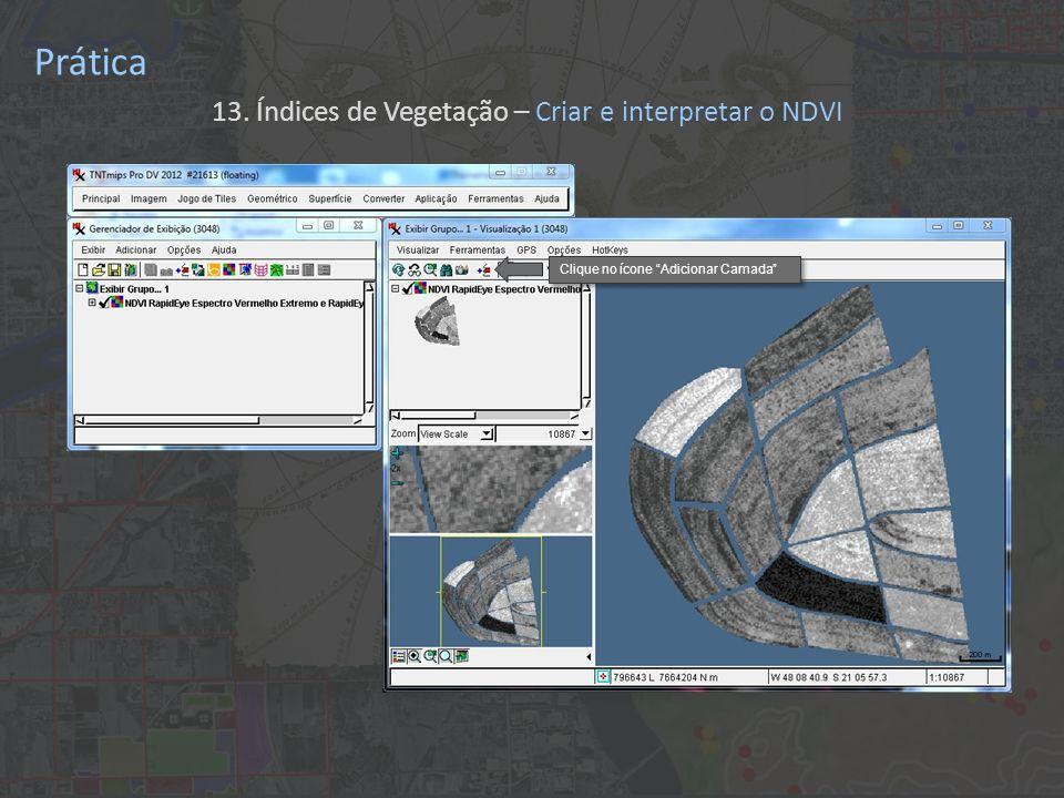 Prática 13. Índices de Vegetação – Criar e interpretar o NDVI Clique no ícone Adicionar Camada